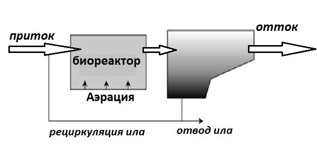 био реактов.png