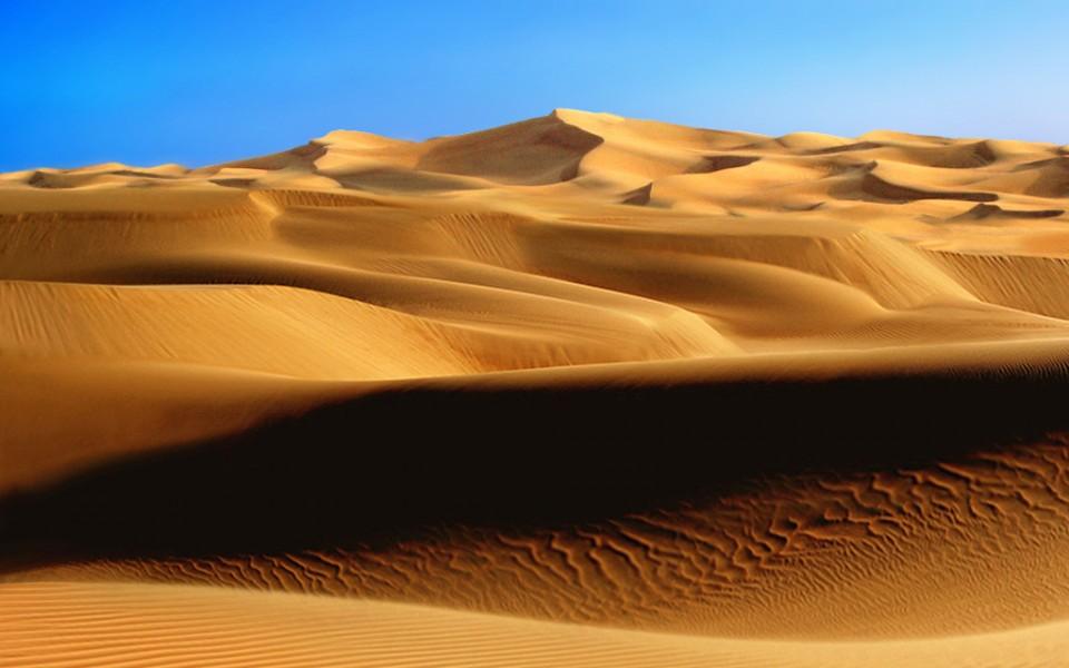 Принц каптагона и ЦРУ в песках. Восточная сказка